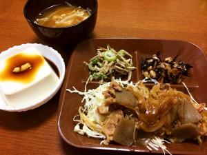 豚肉の生姜焼き・こんにゃく入り、ごぼうサラダ、ひじきと大豆の煮物、冷奴、もやしと油揚げの味噌汁