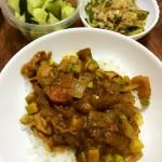 【今週のカレー】ズッキーニと豚肉のカレー、ゴーヤのおひたし、きゅうりの浅漬け